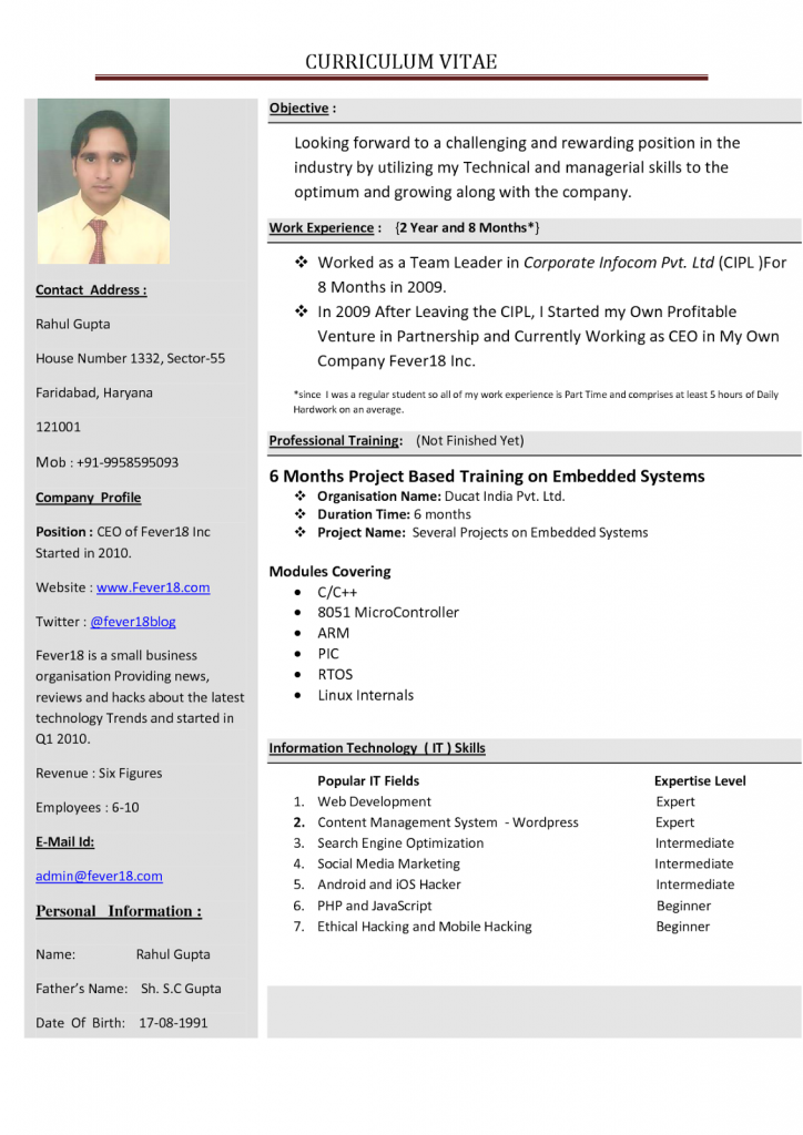Perfect Resume Format For Freshers Pdf