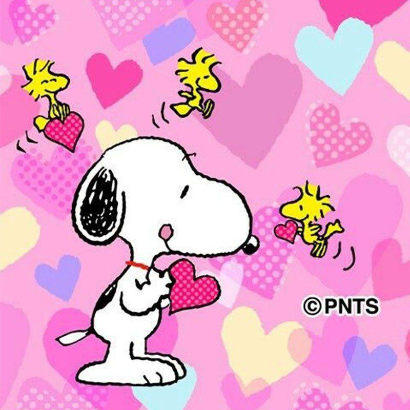 Papel De Parede Super Fofos Do Snoopy