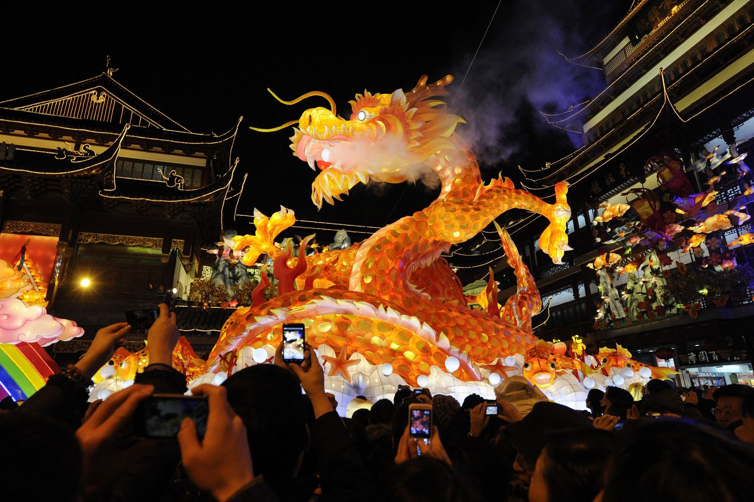 Chinese Dragon Parade Night