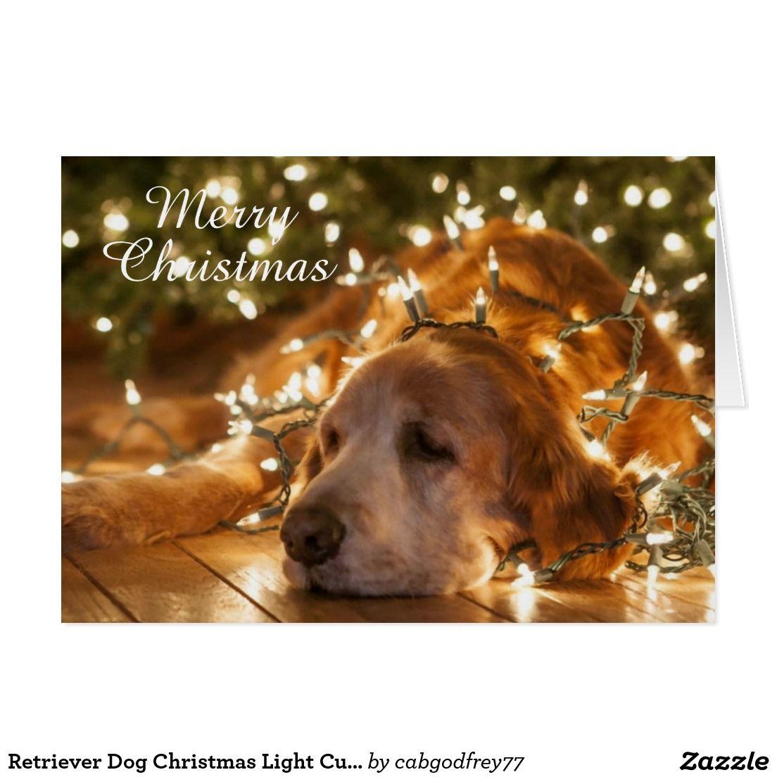 Retriever Dog Christmas Light Custom Greeting Card Funny Cute