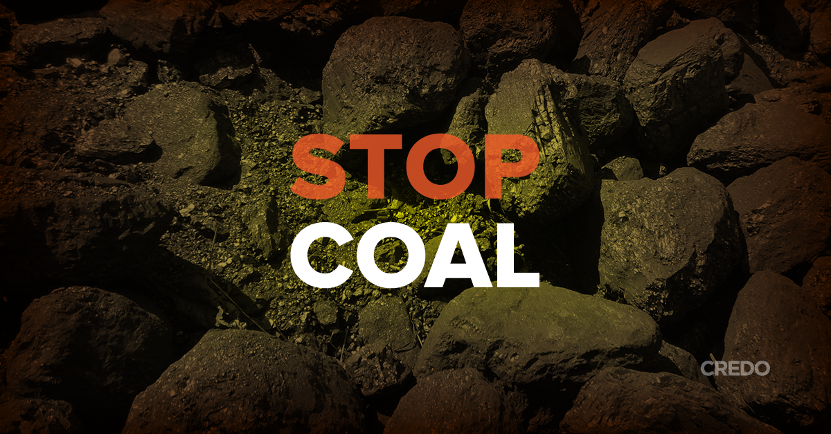 A new report has revealed that America's largest coal