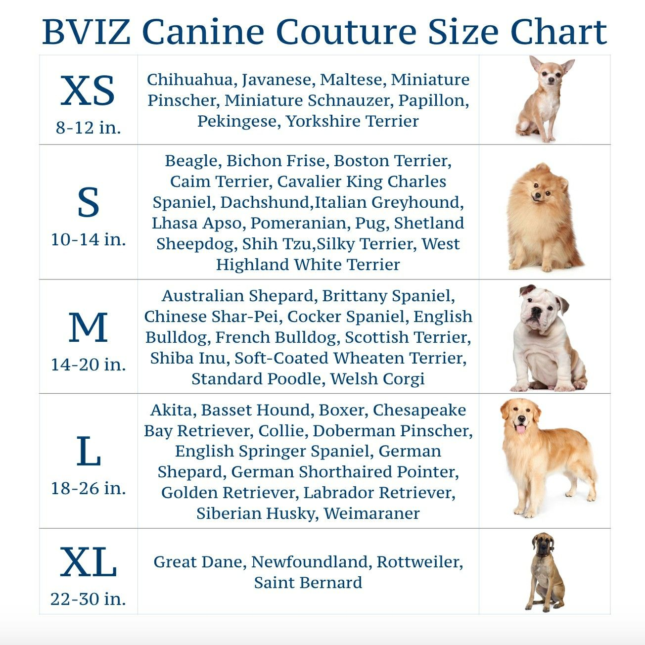 Pin By Localee On Bark Or Moo Or W E Silky Terrier Yorkshire Terrier Lhasa Apso