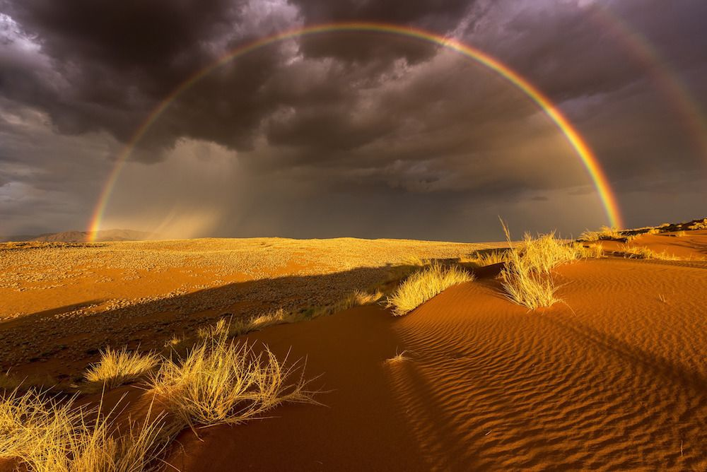 Photo and caption by Stefan Forster/ National Geographic Travel Photographer of the Year Contest; Rain in the Desert.