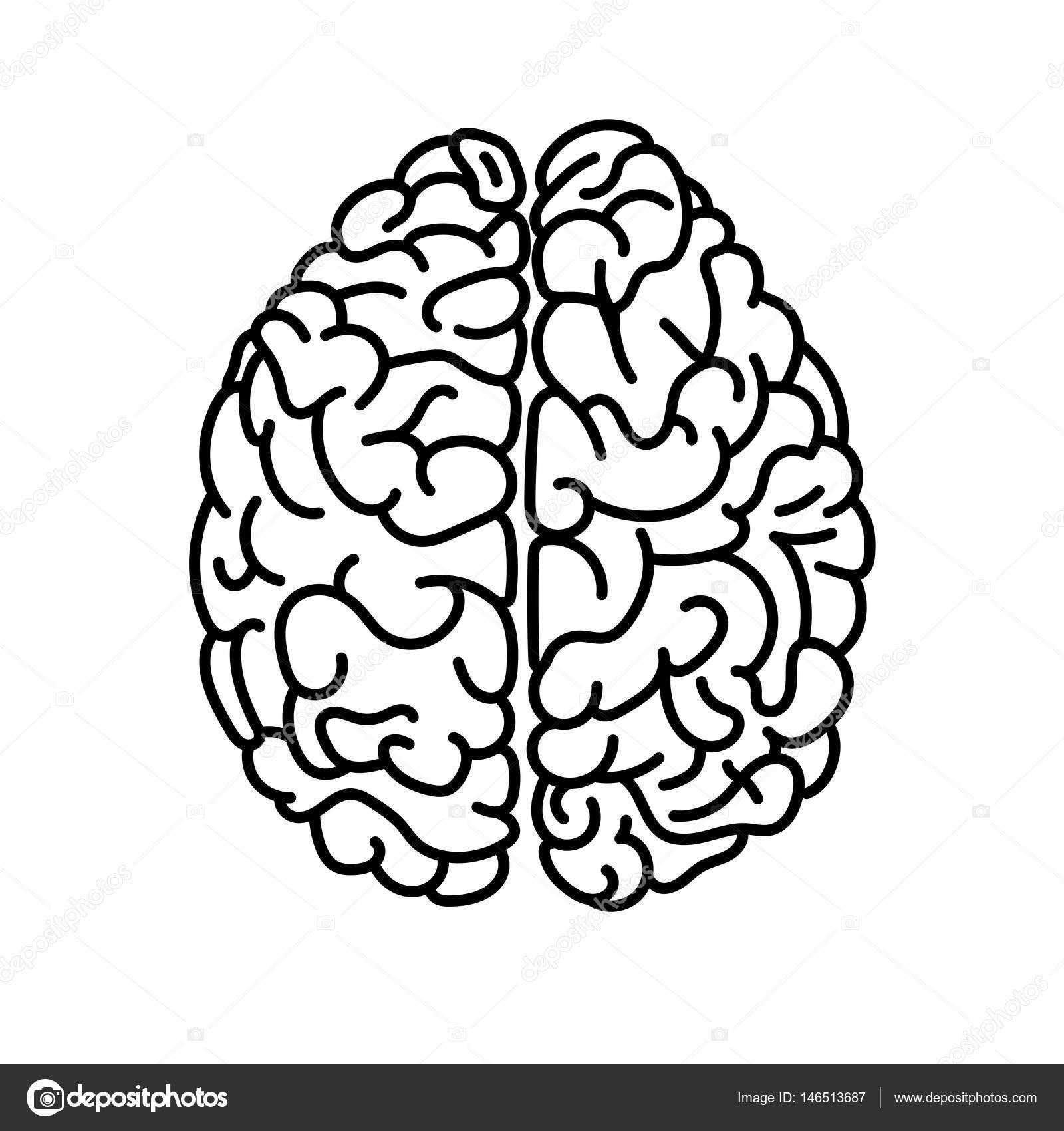 Скачать Плоский вид сверху человеческий мозг каракули