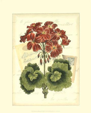 Romantic Bouquet IV Art Print