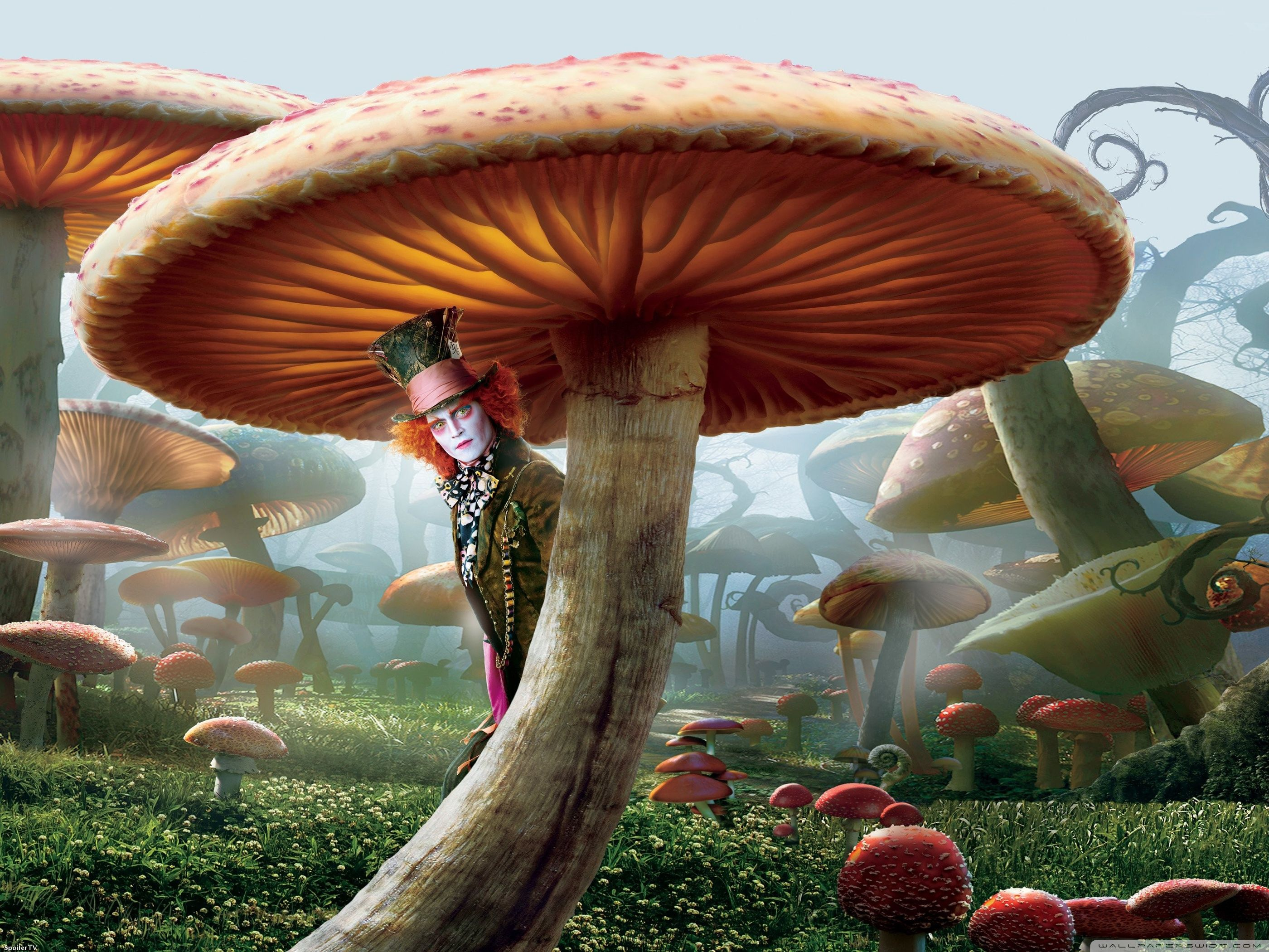 Alice in Wonderland Movie Wallpapers Collection  x