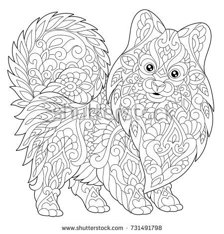 Coloring Page Of Pomeranian Dog Symbol 2018 Chinese New Year Freehand Sketch Drawing For Adult Antistress Colouring Book With Doodle And Zentangle