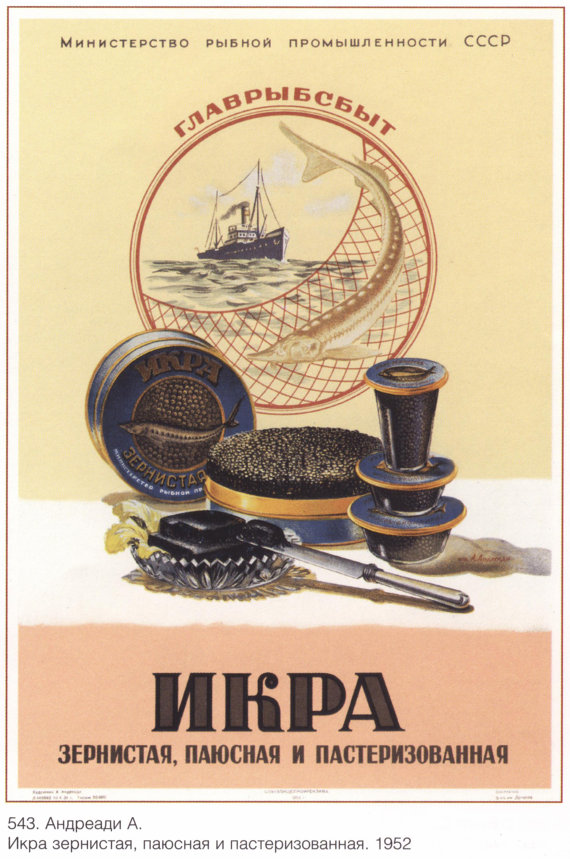 """Antique print. The old illustration: 'Caviar, payusnaya and pasteurized."""" The soviet union. Artist: Andreadi A. 1952."""