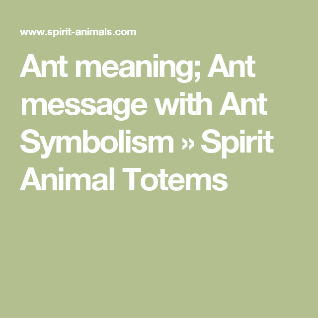 Ant Meaning Ant Message With Ant Symbolism Spirit Animal Totems