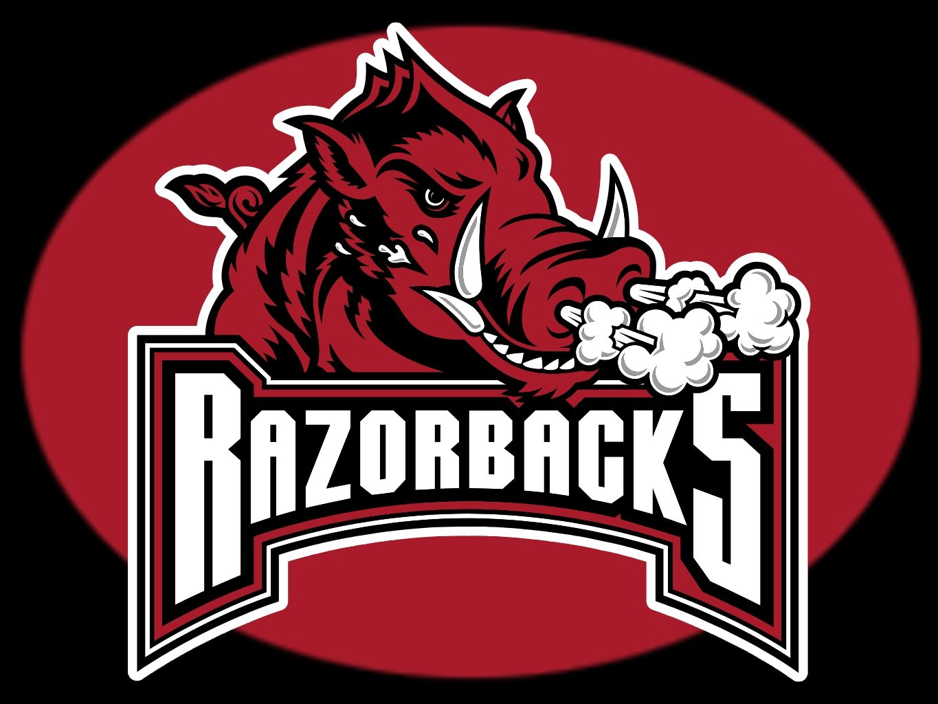 The Razorbacks, also known as the Hogs, are the names of