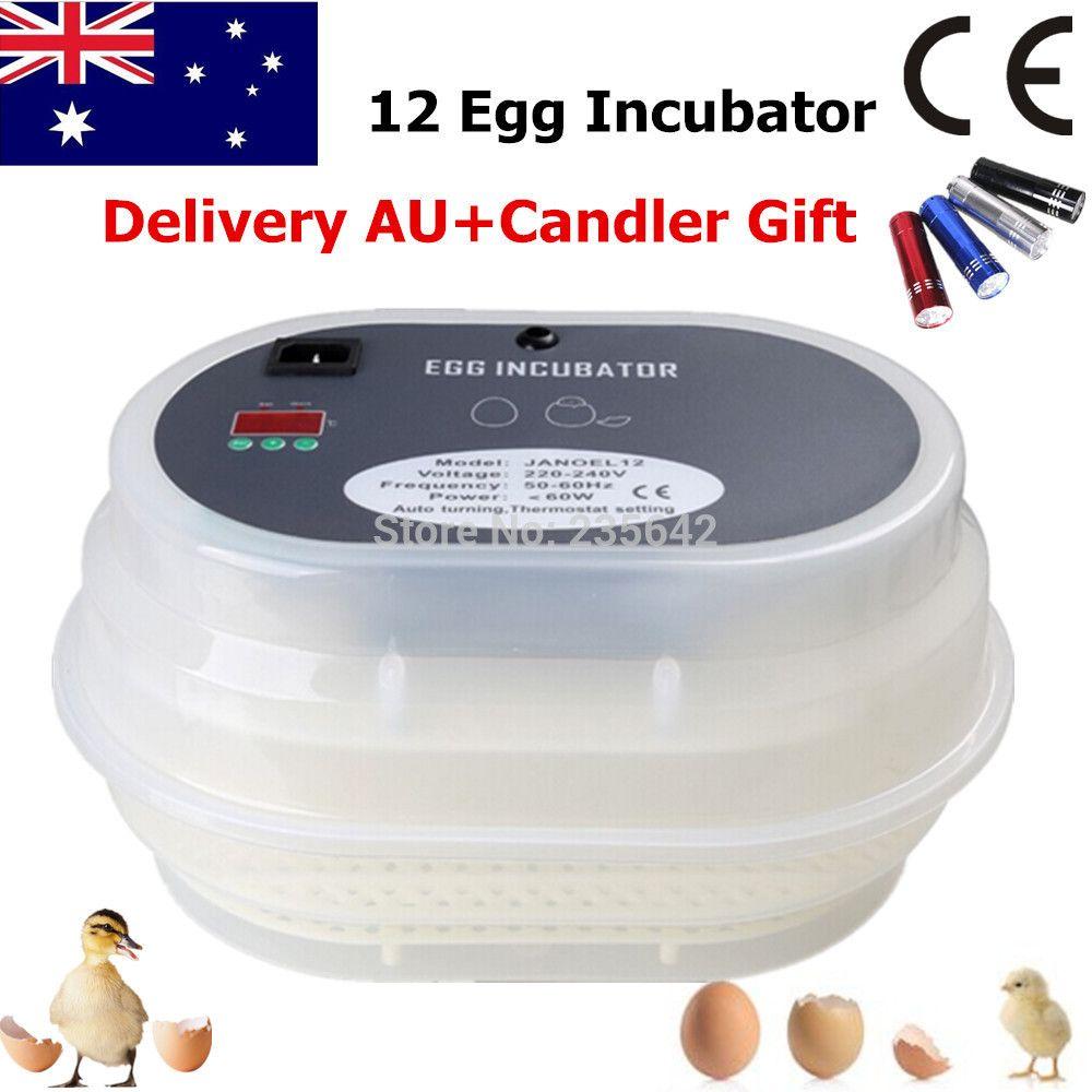 Newest Digital FUll Automatic Chicken Durk Quail Goose Incubator 12 Eggs Incubator