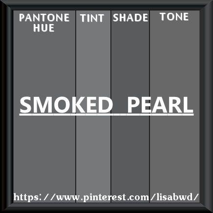 PANTONE SEASONAL COLOR SWATCH SMOKED PEARL