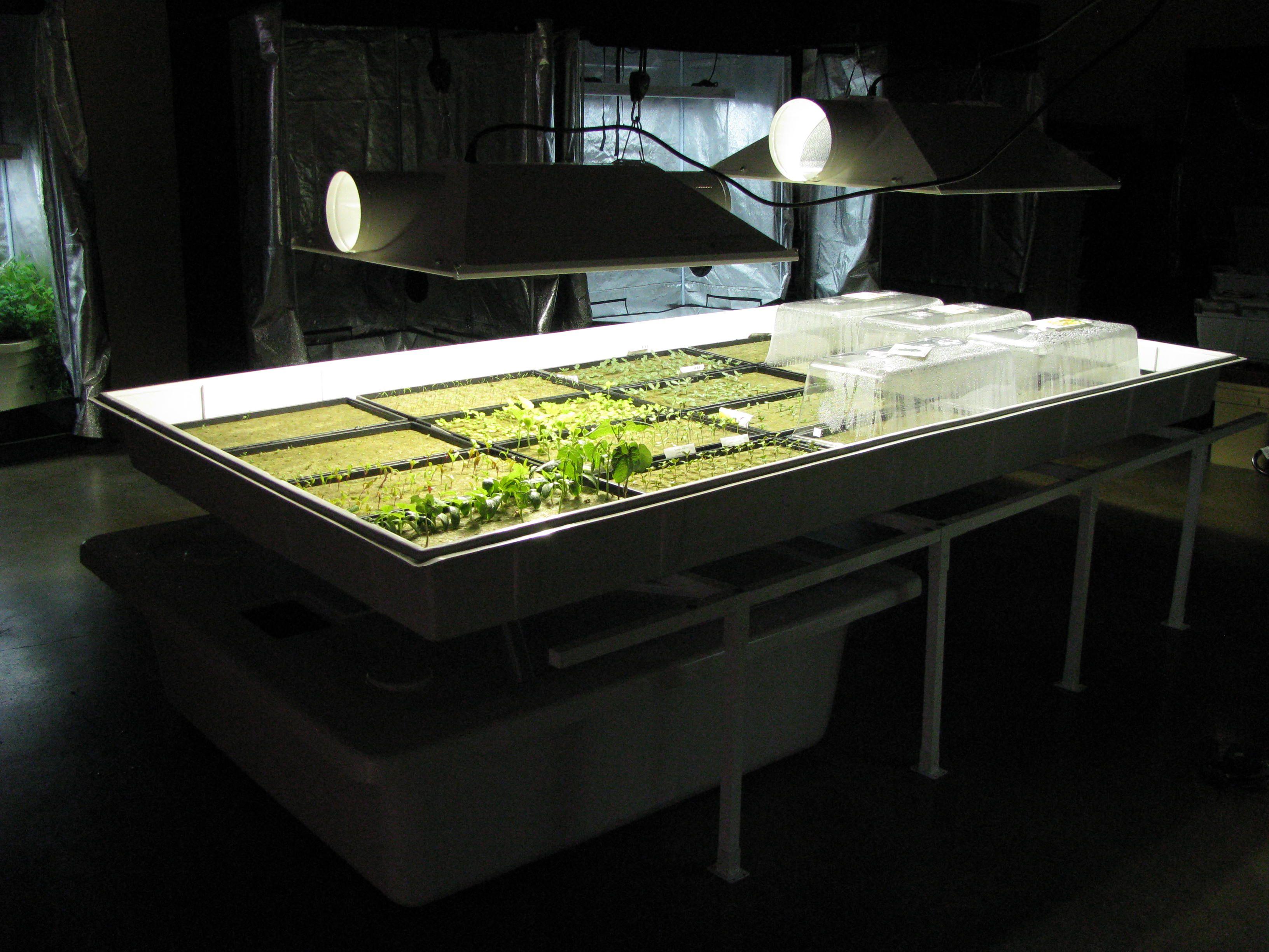 Organic Indoor Gardening Green habitat hydroponics aeroponics organic indoor gardening green habitat hydroponics aeroponics organic indoor gardening workwithnaturefo