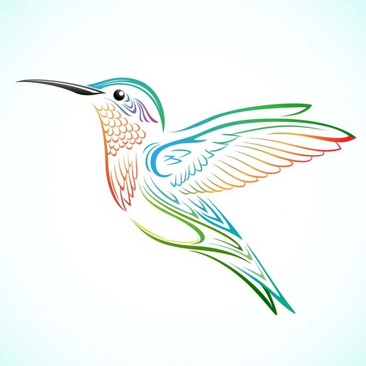 Hummingbird Tattoo Designs Tattoo Designs Hummingbird Tattoo Hummingbird Drawing Cute Tattoos