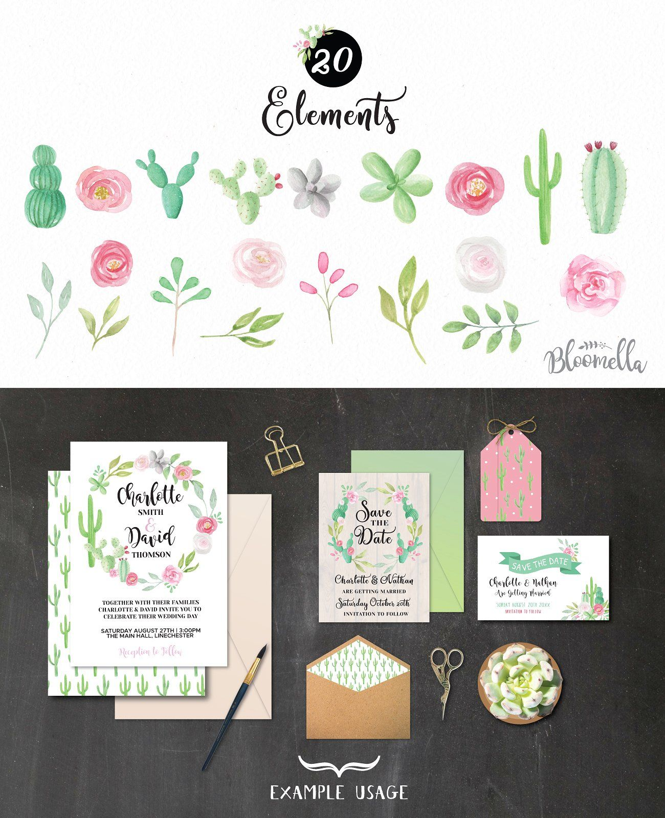 Cactus Wedding Watercolor Elements Px Inches Cm Size