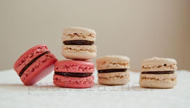 Macaron-leivokset. Reseptin teki Kotikokki.netin nimimerkki Puukilainen