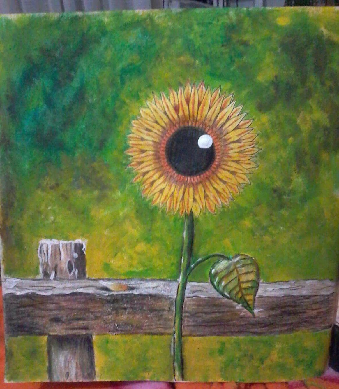 Sunflower Secret Garden Girassol Jardim Secreto Johanna Basford Coloring BooksAdult