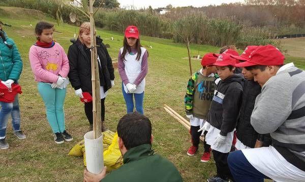 Municipio, Toyota y alumnos plantaron 70 árboles en el Día Mundial del Medio Ambiente
