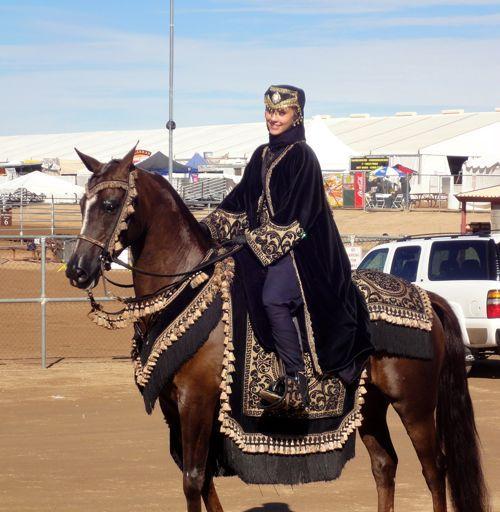 Arabian Horse Show, Scottsdale | Show horses, Horses
