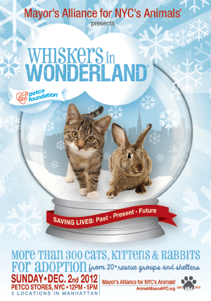 Whiskers In Wonderland With Images Pet Adoption Event Pet Holiday Animal Rescue Fundraising
