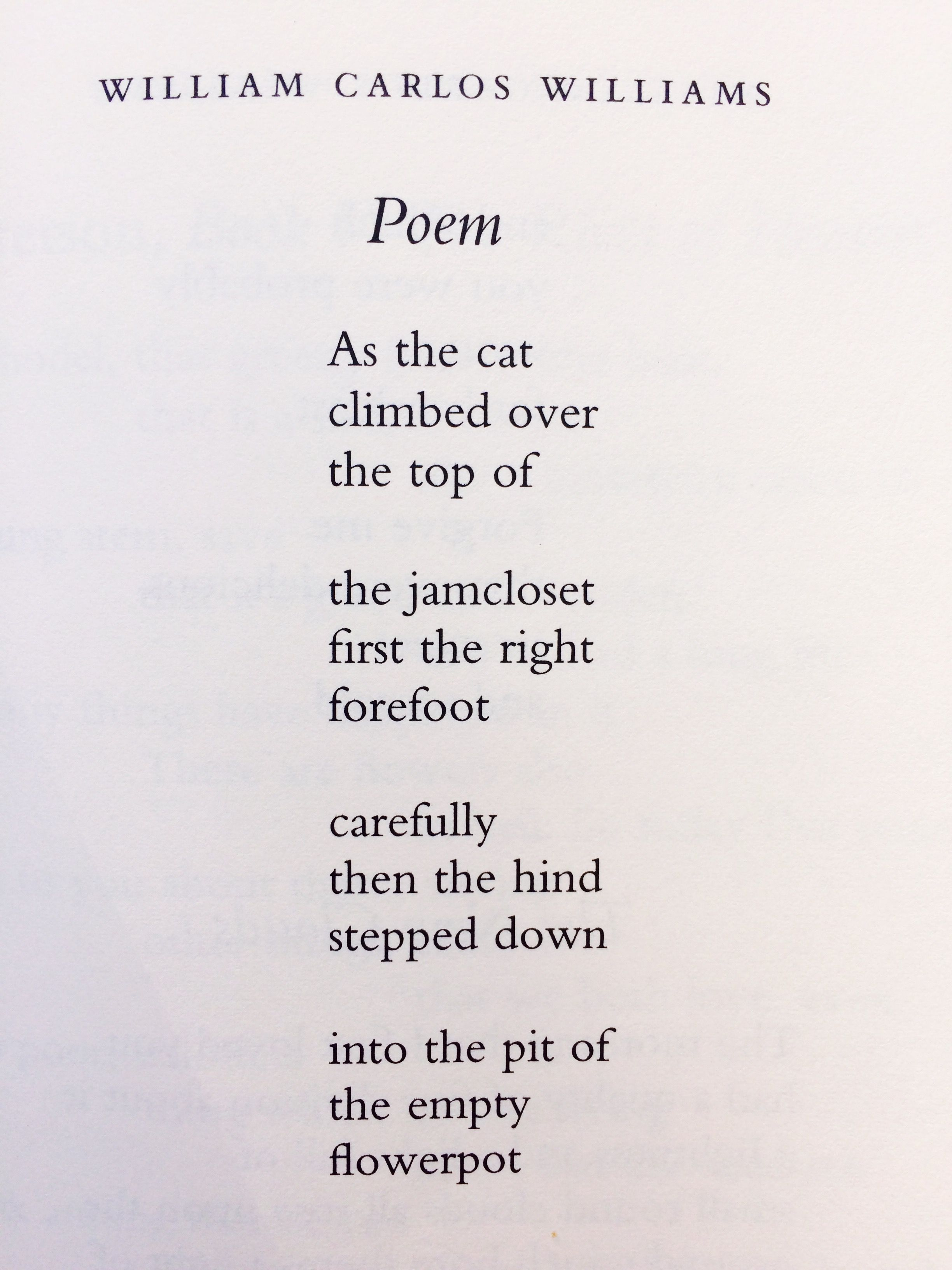 William Carlos William Poem William Carlos Williams