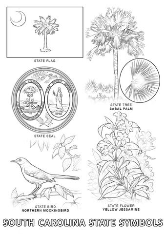 South Carolina State Symbols Coloring Page Free Printable