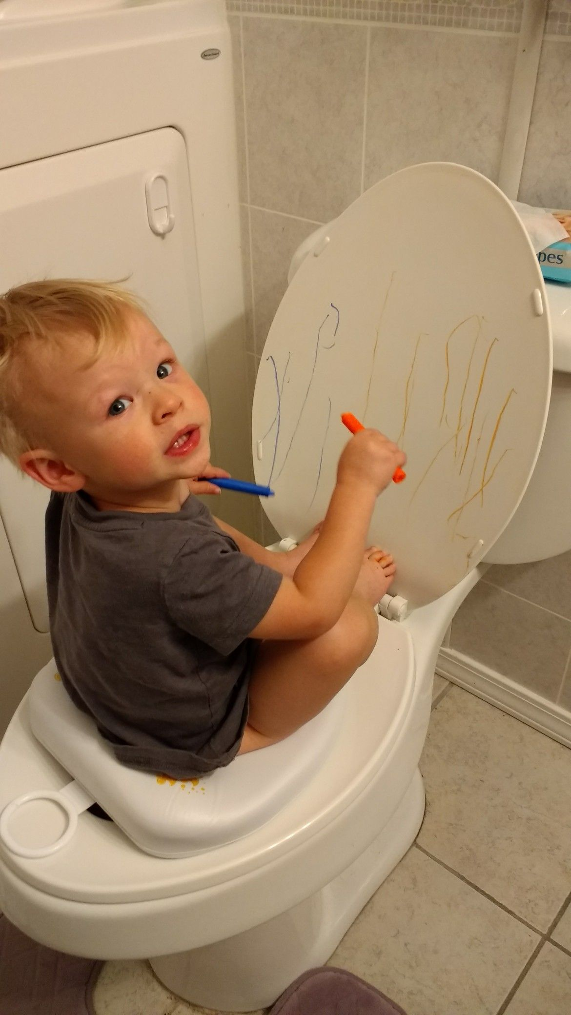 Toddler Potty Training Idea. Let them draw with bath crayons while ...