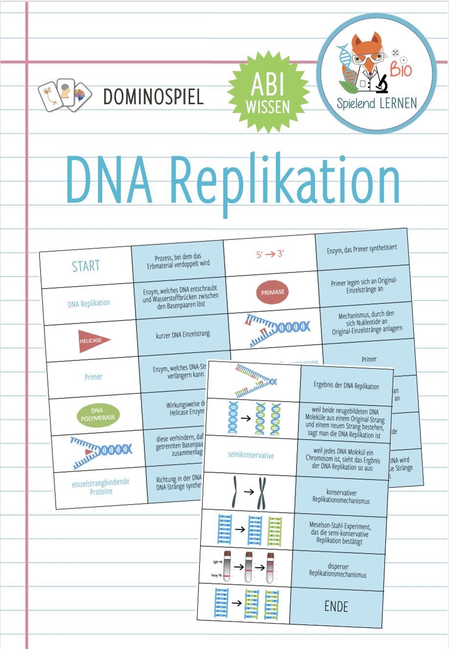DNA Replikation – Domino Spiel Abitur – Unterrichtsmaterial im ...