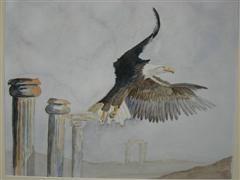 Google Afbeeldingen resultaat voor http://www.derietpen.nl/ateliers/fons/schilderijen/zeearendAquarel60bij50%2520(WinCE).JPG