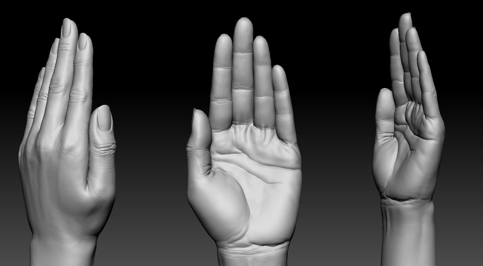 Realistic woman hand , 3DTotal Forums