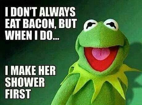 ROFL, you are so naughty Kermit!