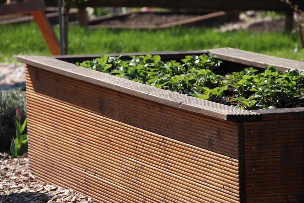 Hochbeet selber bauen, anlegen und bepflanzen – Bauanleitung – Gartenlexikon.de