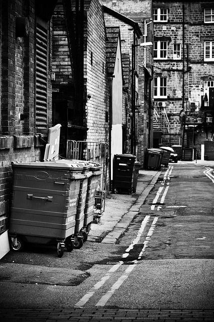 Dumpster S Domain Street Image Street Urban Survival