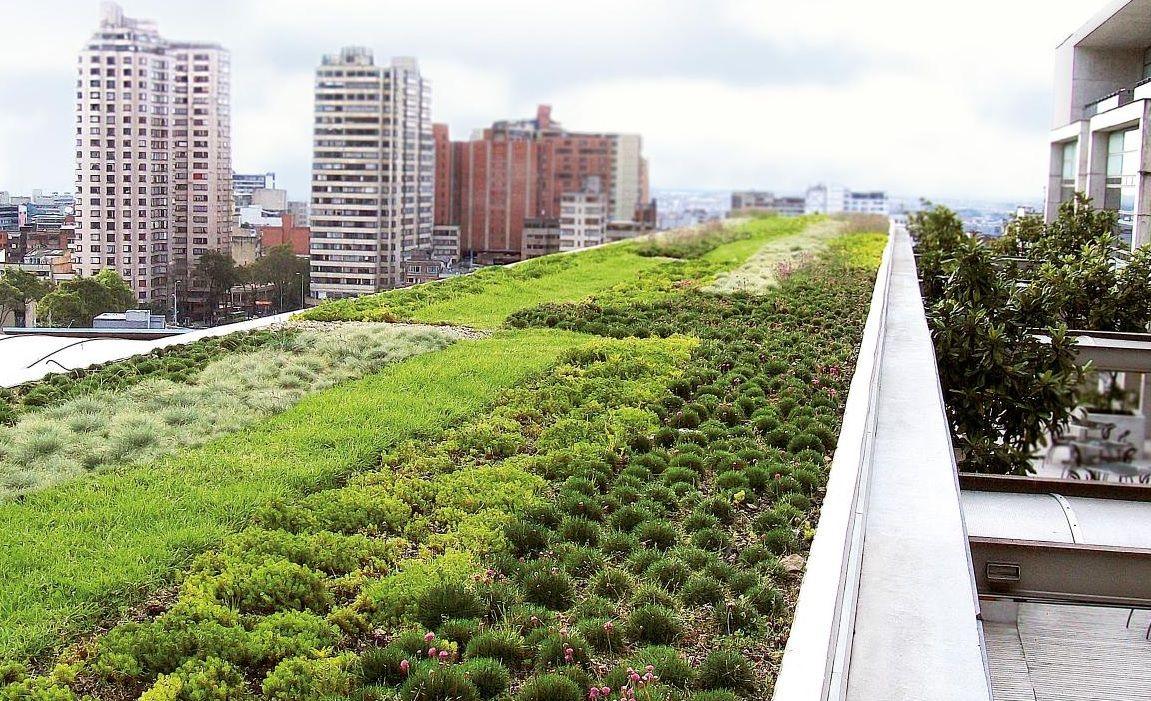 Green Roof Living Green Roof Green Roof Grass Roof Design