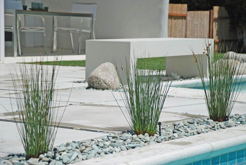 DLD -OUR PROJECTS | low water plant ideas | Pinterest | Water plants ...