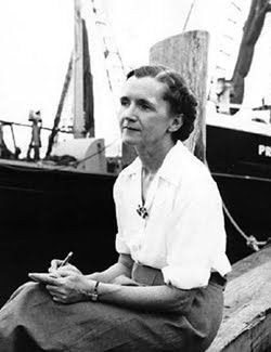"""""""One way to open your eyes is to ask yourself, 'What if I had never seen this before? What if I knew i would never see it again?'"""" ― Rachel Carson, marine biologist, environmentalist, writer. Silent Spring (1962) spurred a reversal in national pesticide policy, which led to a nationwide ban on DDT and other pesticides, and inspired a grassroots environmental movement that led to the creation of the U.S. Environmental Protection Agency"""