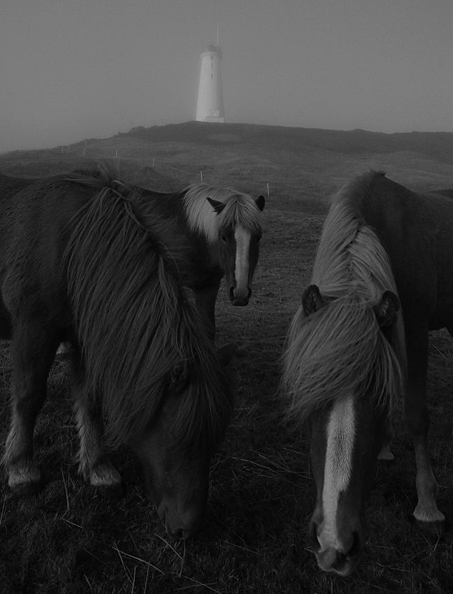 Reykjanes peninsular