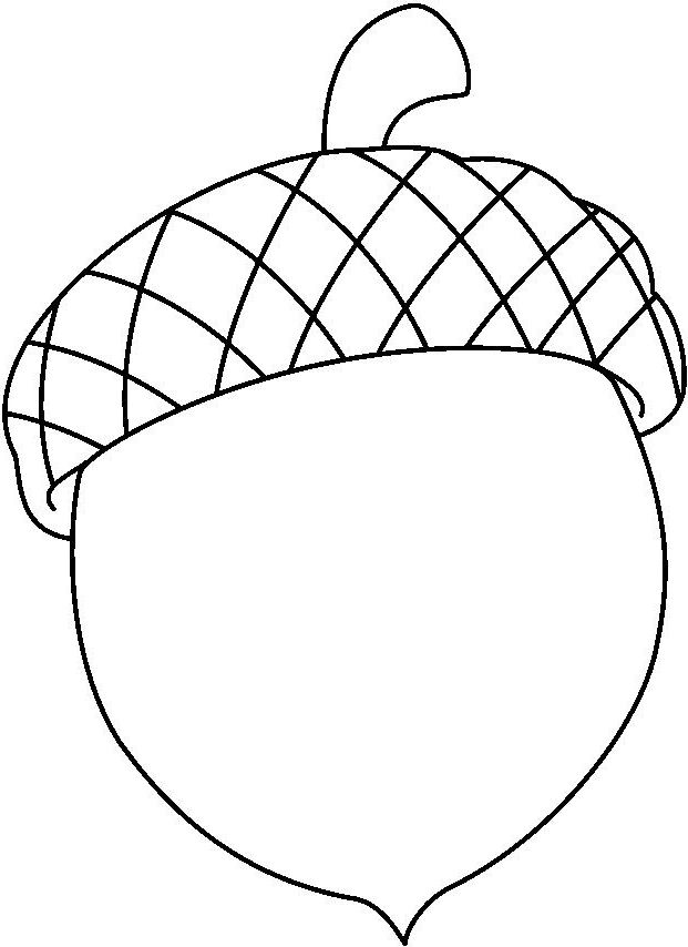 acorn coloring page # 7