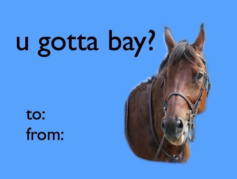 Pin By Atorozco On Funny Tumblr Valentines Cards Meme Valentines Cards Valentines Memes Horse Valentine