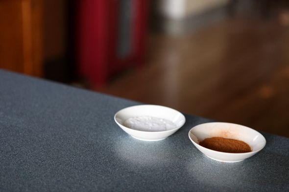 Cinnamon To Keep The Ants Away And Borax Mixed With Powdered Sugar