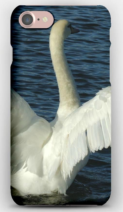 iPhone 7 Case Swans, Couple, Wings, Water, Swimming, Swing