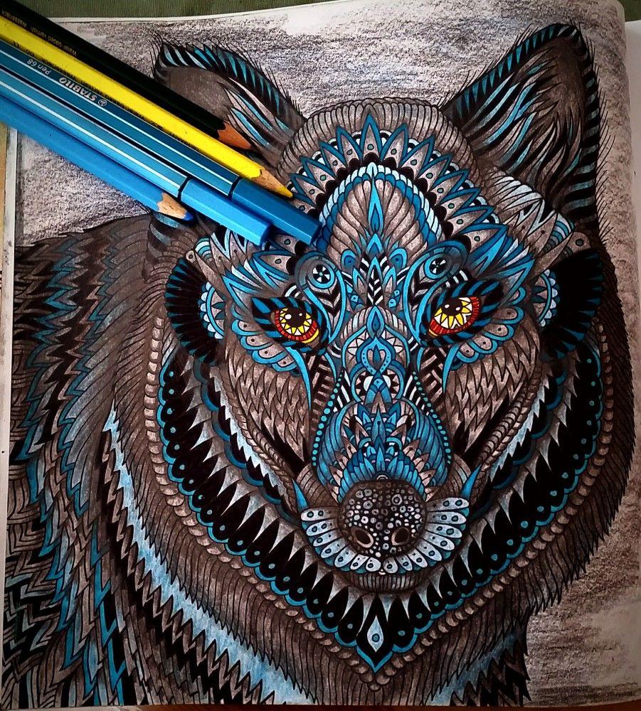 Malbuch Für Erwachsene Fertifg Ausgemalter Wolf Ausmalbilder