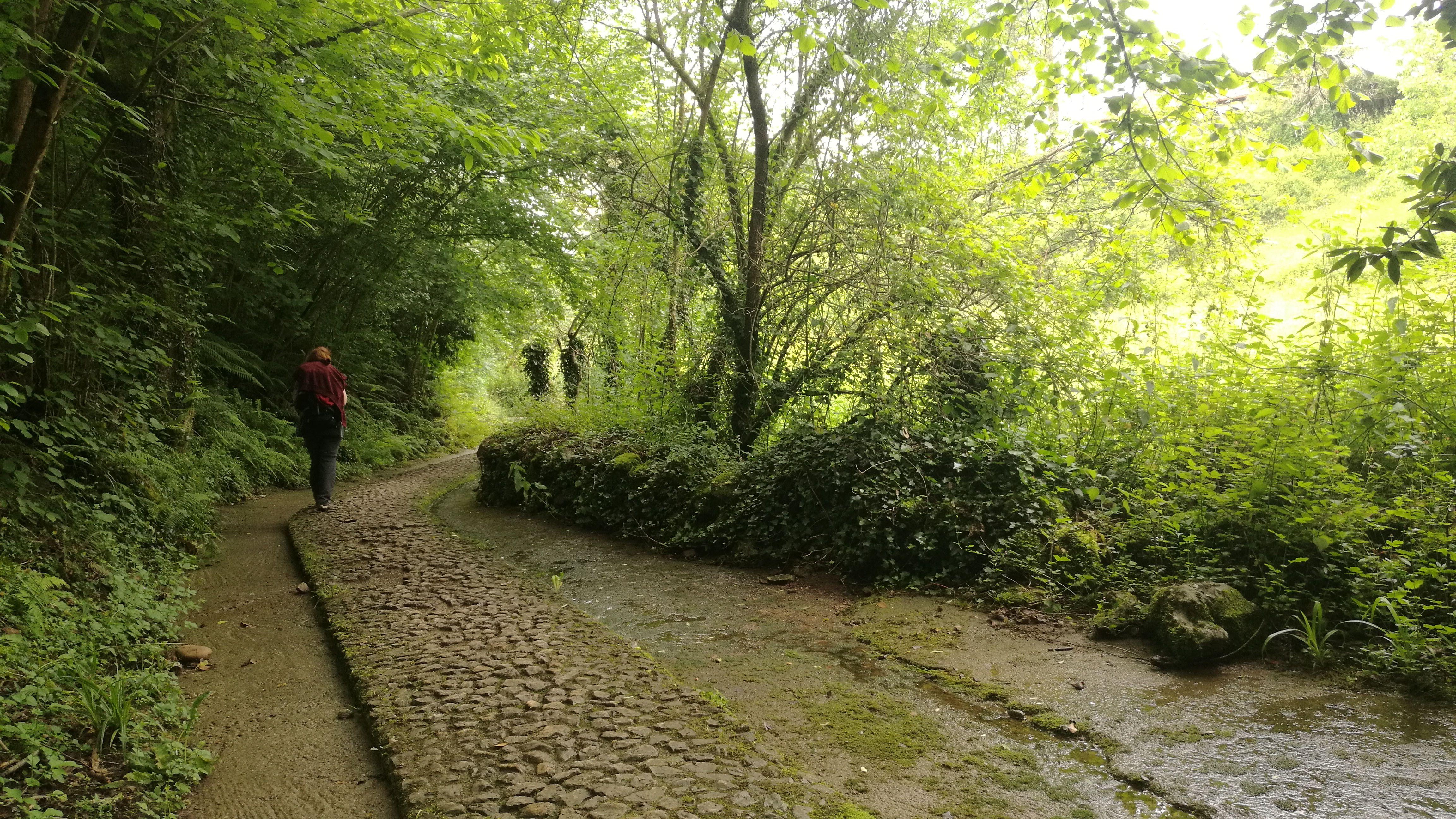 Camino a Grado, antes de empezar a llover
