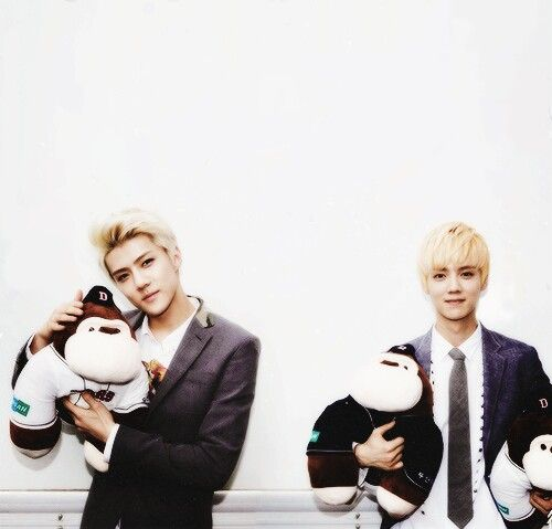 Sehun & luhan avc des peluches.... Singes ?! LolXD