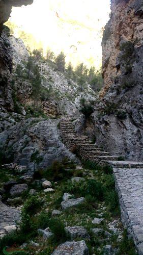 Foto tomada durante la ruta Alcoy-Montcabrer-Cocentaina  En