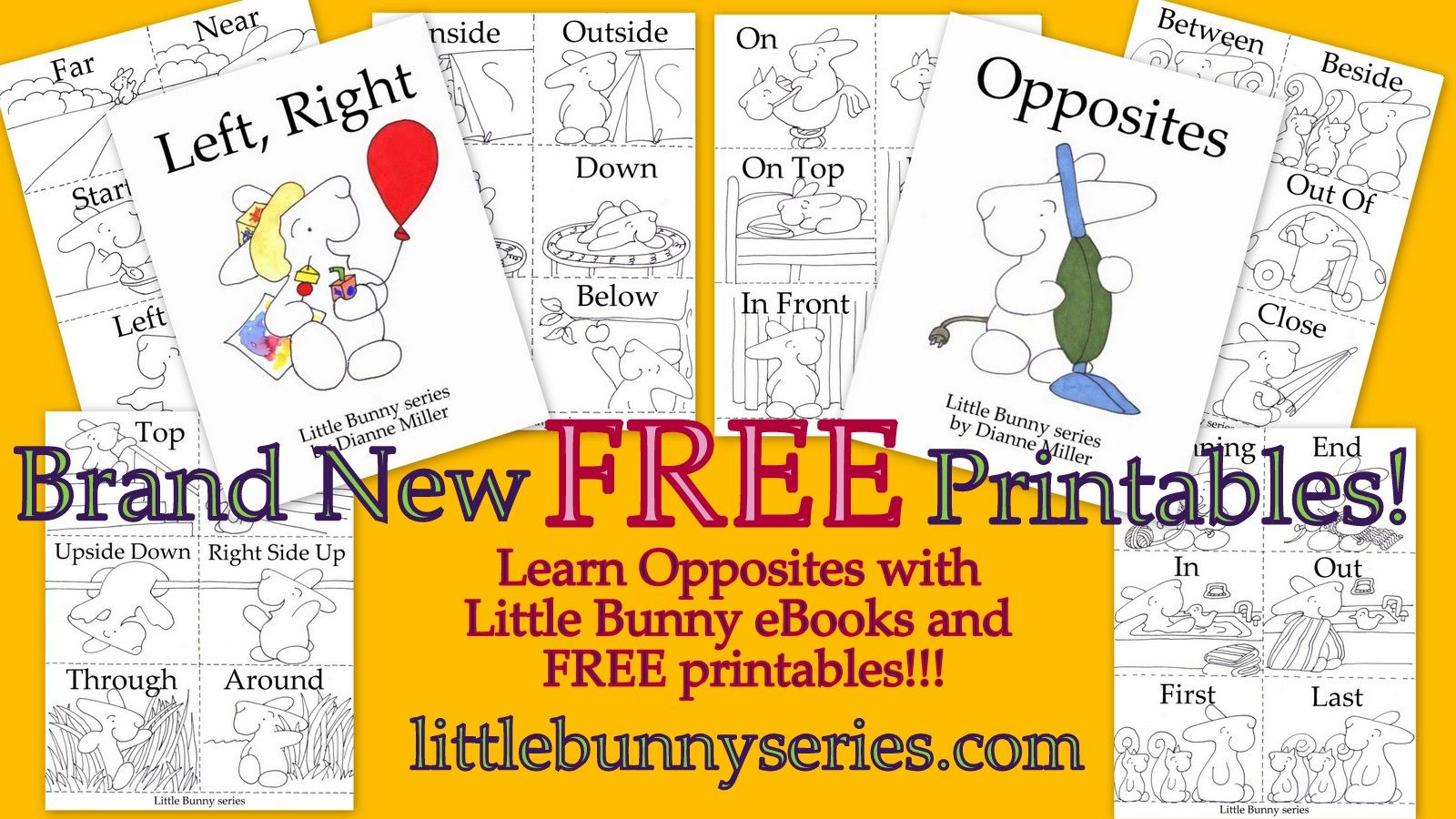 Pin By Little Bunny Series On 3 In 1 Printables