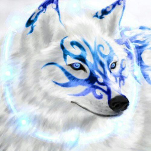 Lobo azul | Lobos | Pinterest | Azul, Lobos y Animales