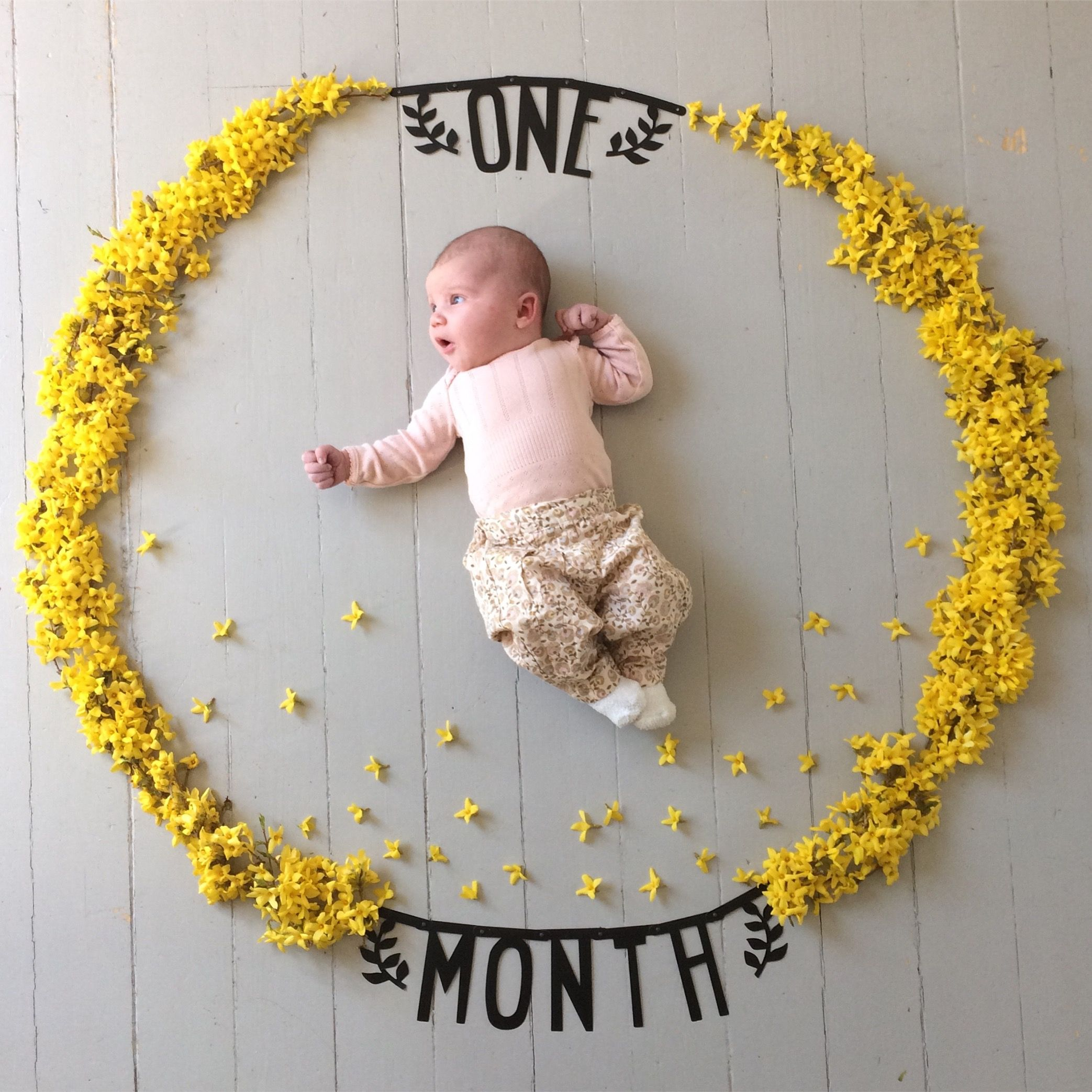 One Month Old Monthly Photo Series Newborn Photography Monthly Baby Picture Ideas Ba Baby Photoshoot Boy Baby Girl Newborn Pictures Baby Month By Month