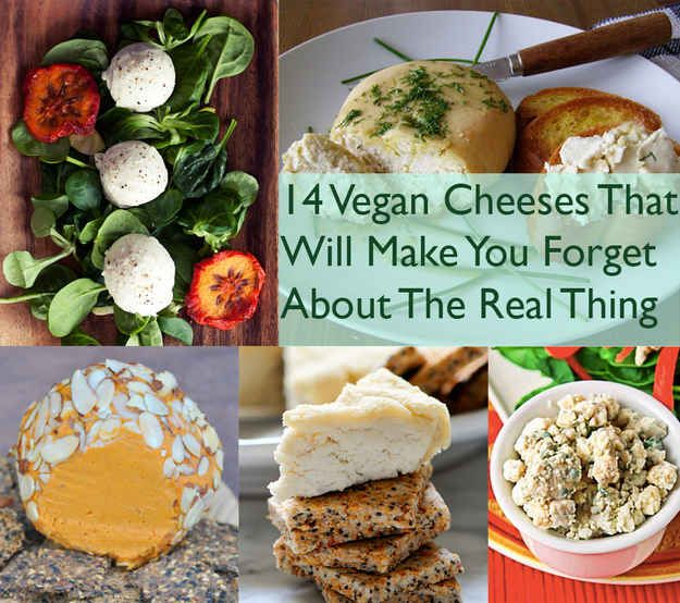 14 Vegan Cheeses That Will Make You Forget About The Real Thing Vegan Dishes Raw Food Recipes Vegetarian Vegan Recipes