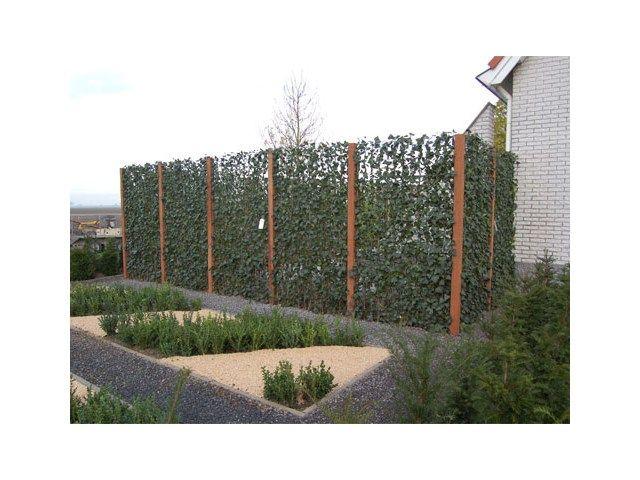 Clôture de jardin pas chère, originale et design | Fences, Gates ...